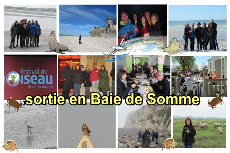 BAIE DE SOMME 2012